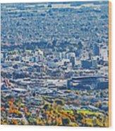 Christchurch City Wood Print