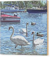 Christchurch Harbour Swans And Boats Wood Print