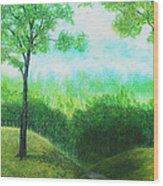 Christian's Road Wood Print
