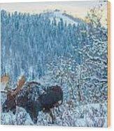 Christie Moose Wood Print