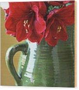 Christmas Amaryllis Wood Print