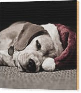 Christmas Beagle Wood Print by Paulina Szajek