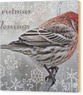 Christmas Blessings Finch Greeting Card Wood Print