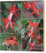 Christmas Cactus Collage Wood Print
