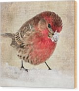 Christmas Card 9 Wood Print