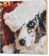 Christmas Cardigan Wood Print