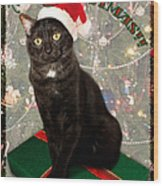 Christmas Cat Wood Print