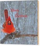 Christmas Red Cardinal Wood Print