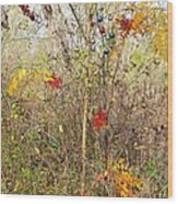 Christmas In Nature Wood Print
