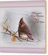 Christmas In Pink - Cardinal Christmas Wood Print