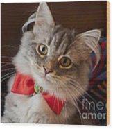 Christmas Kitten Wood Print