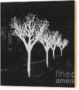 Christmas Lights In Black And White Wood Print