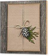 Christmas Present  Wood Print by Elena Elisseeva
