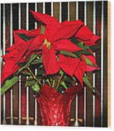 Christmas Red Poinsettia Wood Print