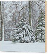 Christmas Snow Wood Print