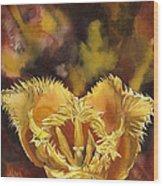 Christmas Tulip Wood Print