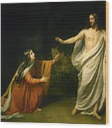 Christs Appearance To Mary Magdalene After The Resurrection Wood Print