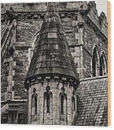 Christs Church - Dublin Ireland Wood Print
