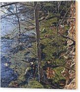 Chroma Wood Print