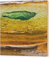 Chromatic Pool Vertical Wood Print