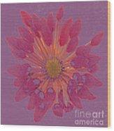Chrysanthemum Digitally Softly Toned Wood Print