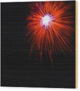 Chrysanthemum Wood Print by Lester Phipps