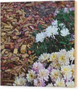 Chrysanthemums In The Forest Wood Print by Ioana Ciurariu
