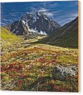 Chugach Autumn Wood Print