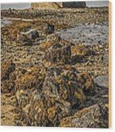 Church By The Rocks Wood Print