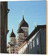Church In Estonia Wood Print