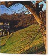 Church On A Landscape, Rievaulx Abbey Wood Print