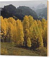Cimarron Forks Wood Print