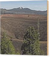 Cinder Cone Crater Wood Print