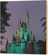 Cinderella Castle At Night  Wood Print