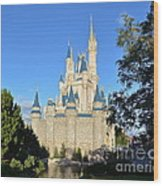 Cinderella's Castle II Wood Print