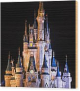 Cinderella's Castle in Magic Kingdom Wood Print
