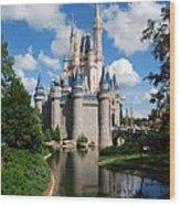 Cinderellas  Castle Wood Print
