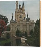 Cinderella's Castle Reflected Wood Print