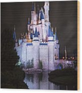 Cinderella's Castle Reflection Wood Print