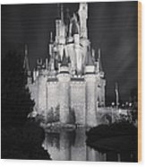 Cinderella's Castle Reflection Black And White Wood Print
