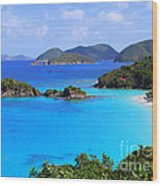 Cinnamon Bay St. John Virgin Islands Wood Print