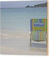 Cinnamon Beach Wood Print