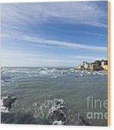 Cinque Terre And The Sea Wood Print
