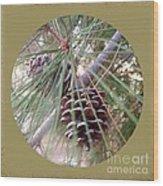 Circle Of Cones  Wood Print