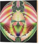 Circle Of Rainbows Wood Print