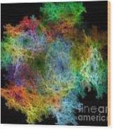 Circular Rainbow Wood Print