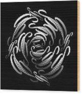 Circularity No. 669 Wood Print