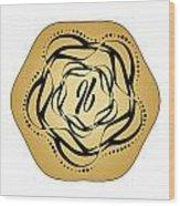 Circularity No. 697 Wood Print
