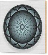 Circularity No. 766 Wood Print