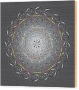 Circularity No.703 Wood Print